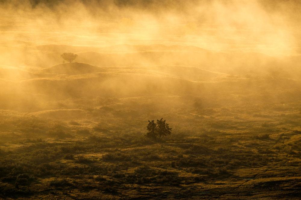Theodore Roosevelt National Park - 030.jpg
