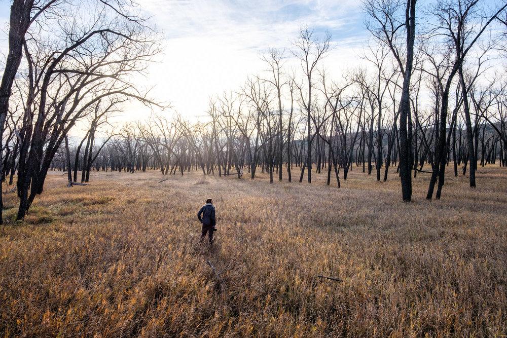 Theodore Roosevelt National Park - 073.jpg
