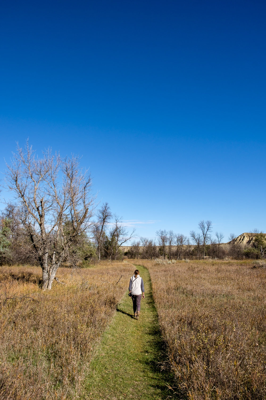 Theodore Roosevelt National Park - 078.jpg