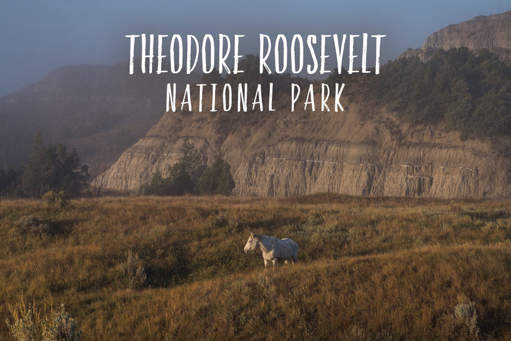 Park 46/59: Theodore Roosevelt National Park in North Dakota