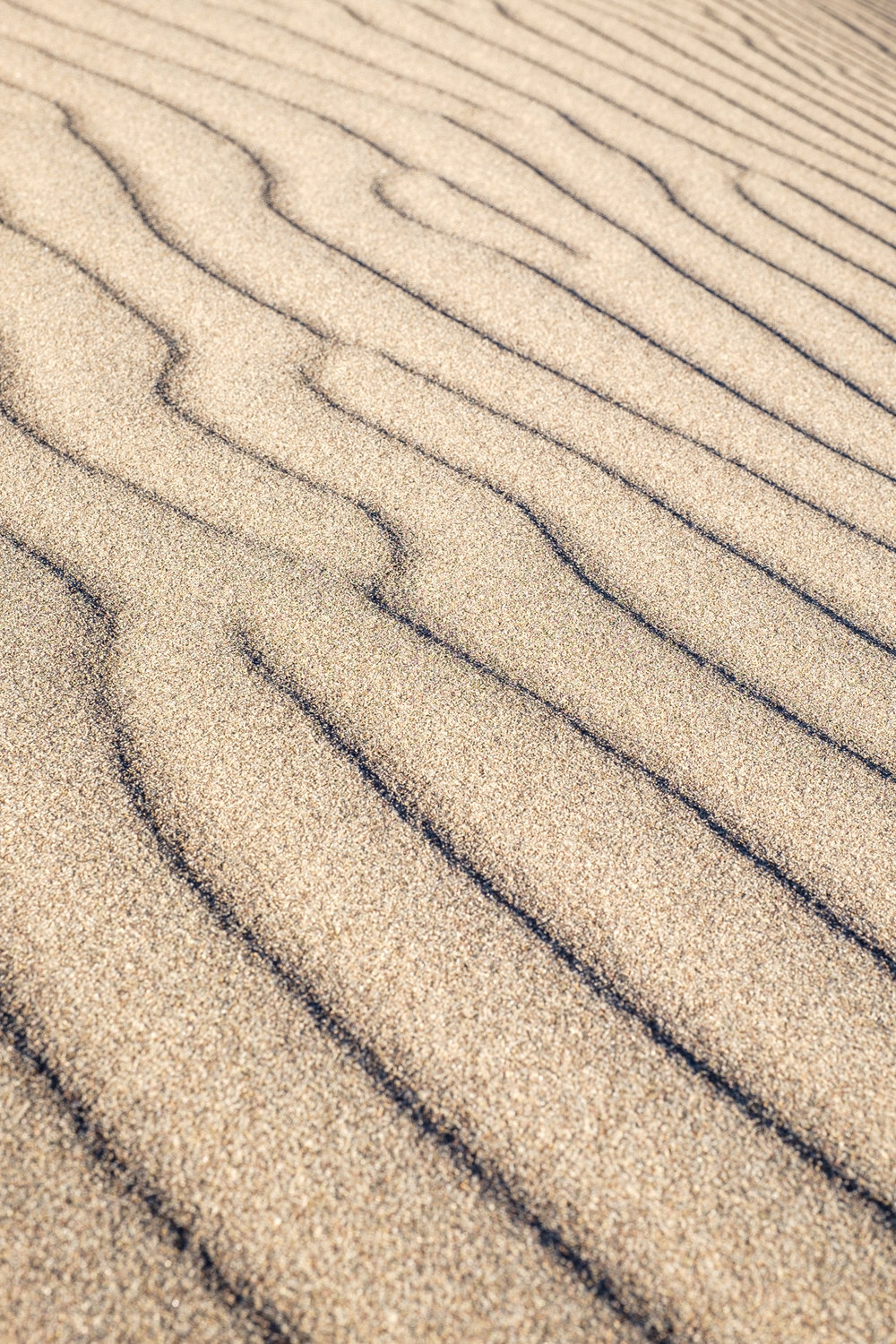 Awesome lines in the sand.