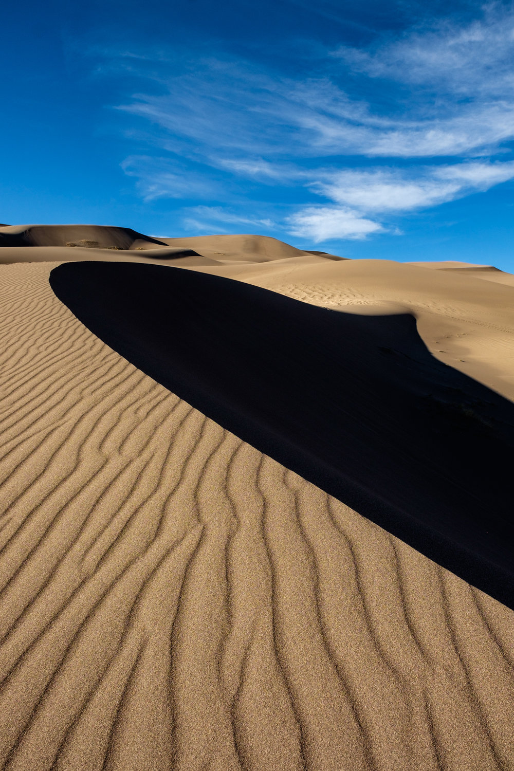 The play of light and shadow on the dunes never ceases to amaze.