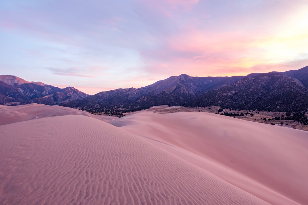 The dunes take on the pink hue of the morning sky.