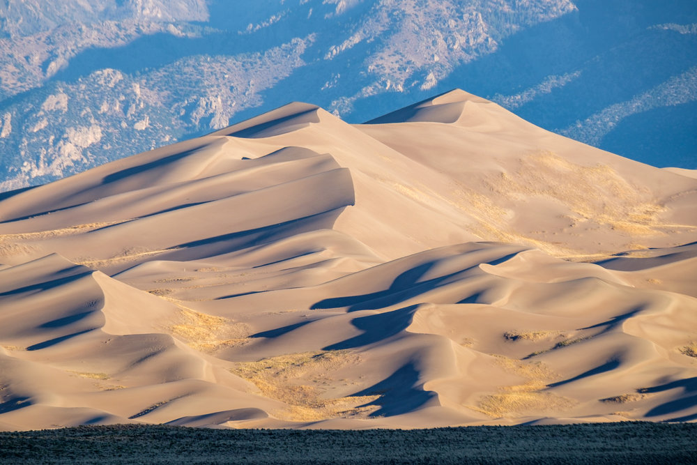 """Reversing dunes"" are the largest dunes, designed by winds moving the sands in opposite directions."
