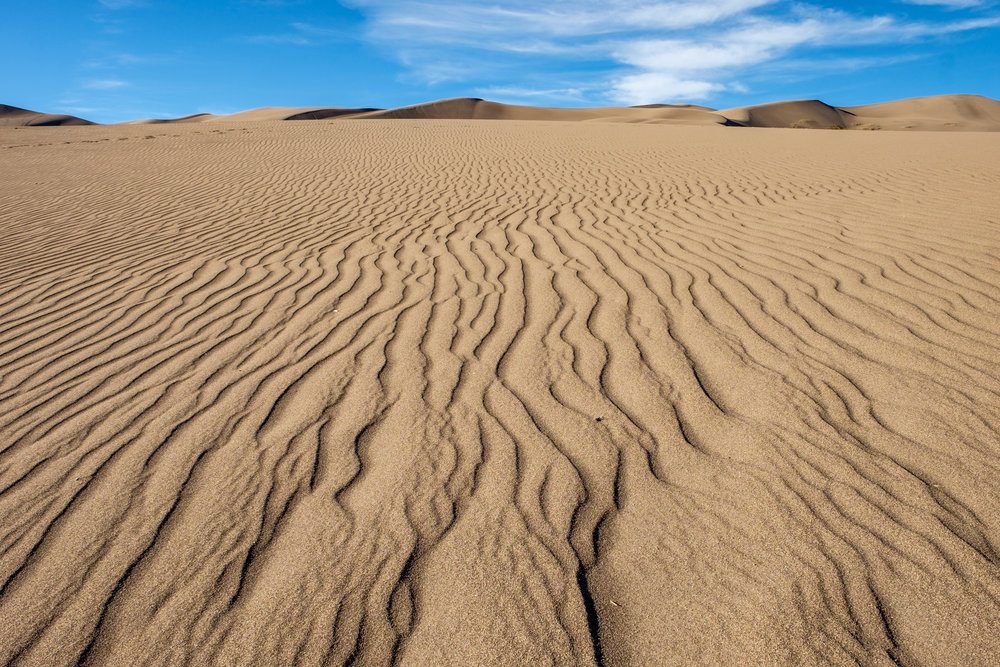"""Transverse dunes"" are a series of aligned dunes leading up to the crest."