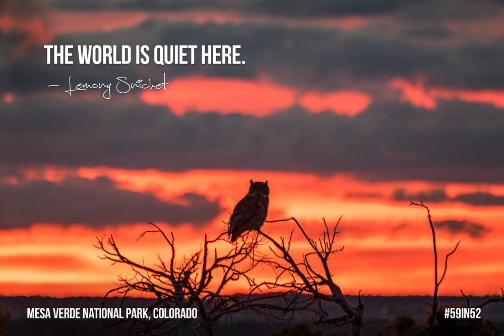 """The world is quiet here."" - Lemony Snicket"