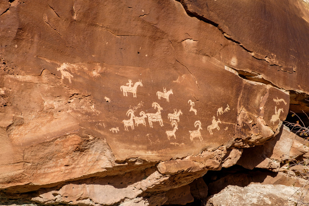 Petroglyphs at Wolfe Ranch