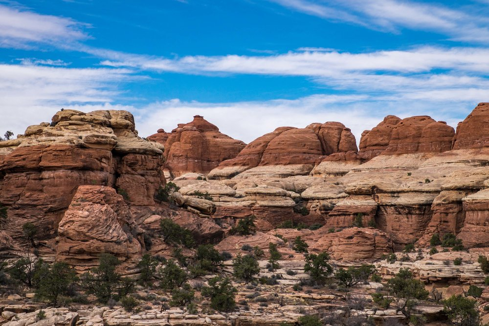 Canyonlands National Park - 071.jpg