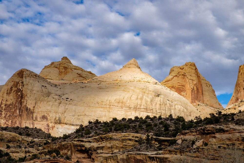Back along the main park road, we had some great views of Navajo Dome.