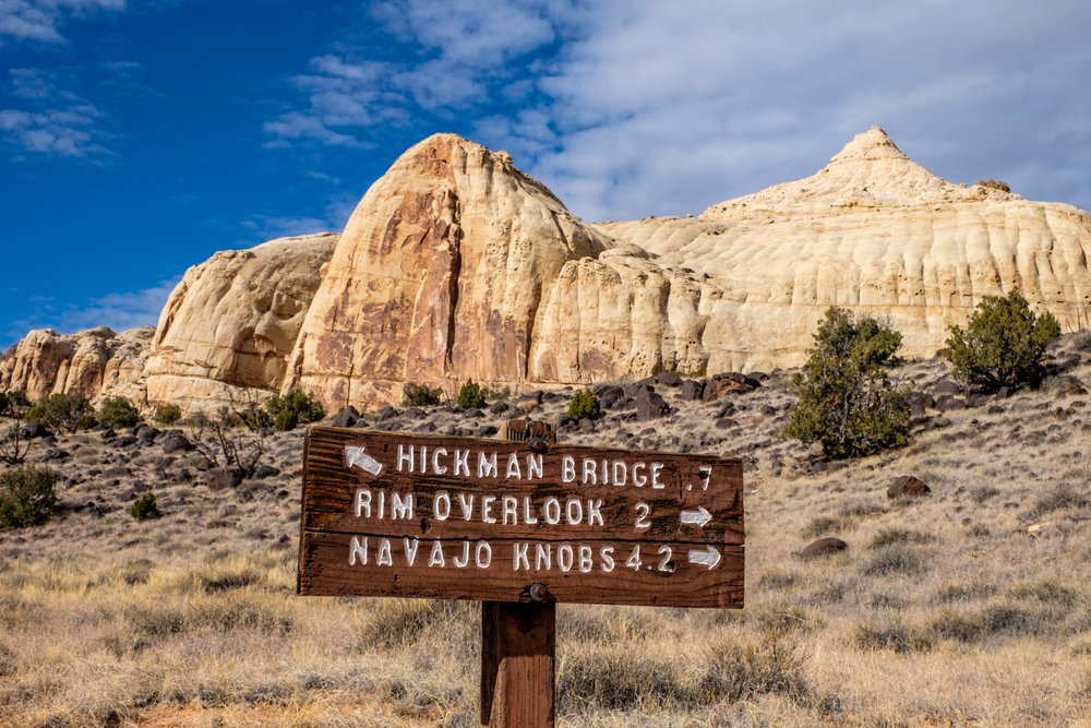 One of the more popular hikes in the park is to see the Hickman Bridge.