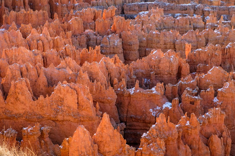 The hoodoos have take on many different forms.