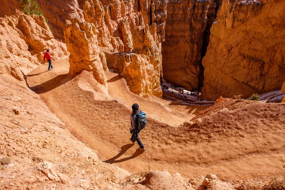 The most popular hike in the park is down the Navajo Loop trail through Wall Street section (seen here) and back up the Queen's Garden trail.