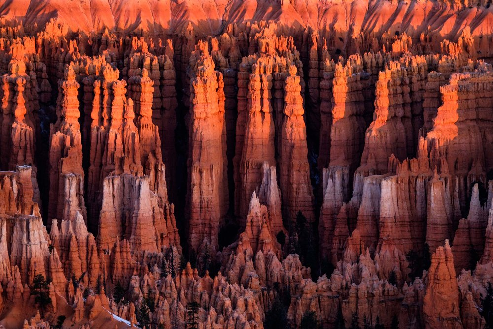 The largest of Bryce Canyon National Park's 20 amphitheaters, the Bryce Amphitheater, makes you feel like you are walking on the edge of another world.