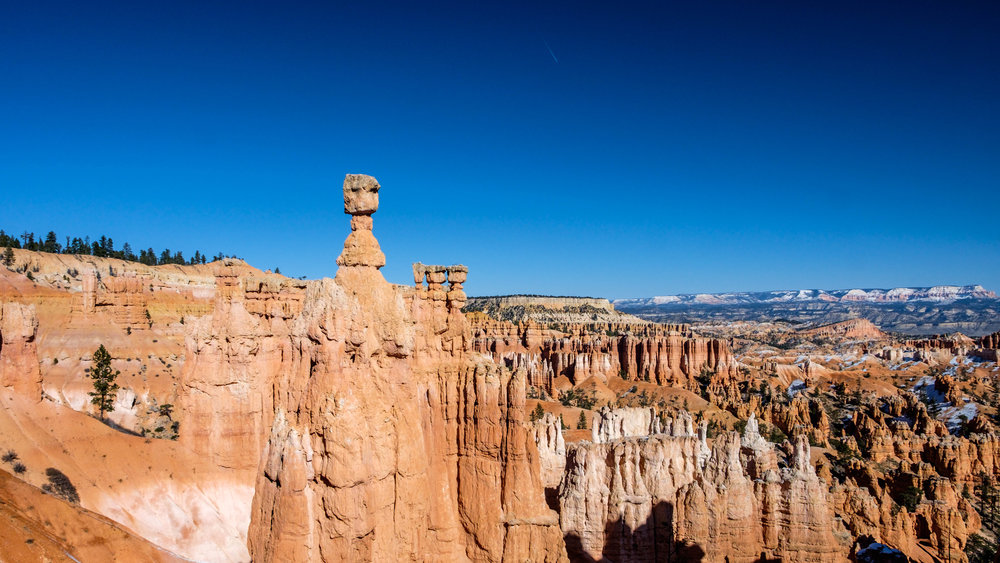 Thor's Hammer stands isolated from other hoodoos in the Bryce Amphitheater.