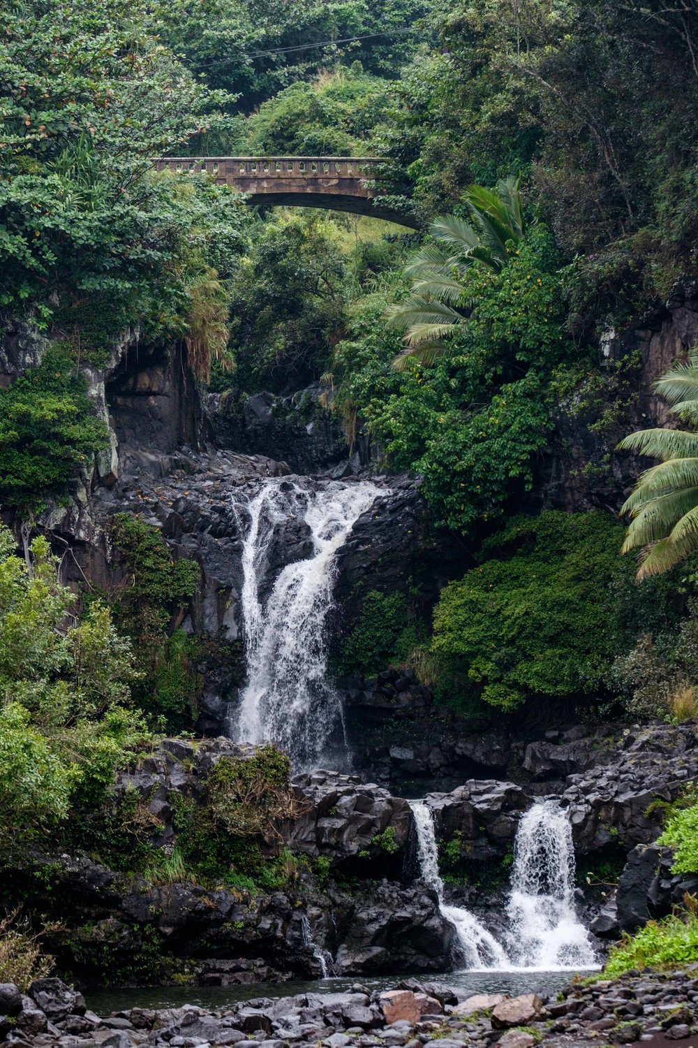 A view of some of the Seven Sacred Pools in the Ohe'o Gulch.
