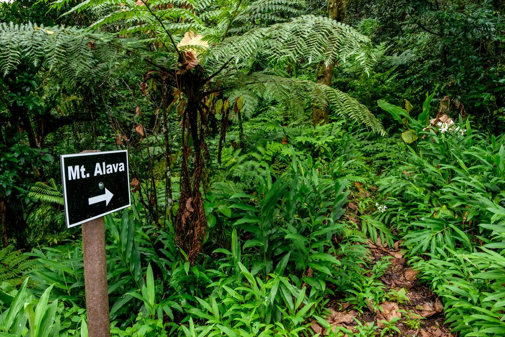 American Samoa National Park - 080.jpg