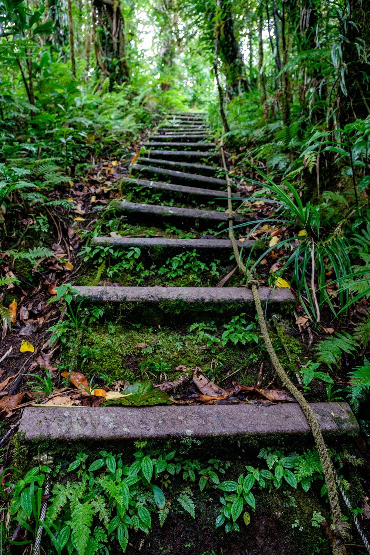 American Samoa National Park - 083.jpg