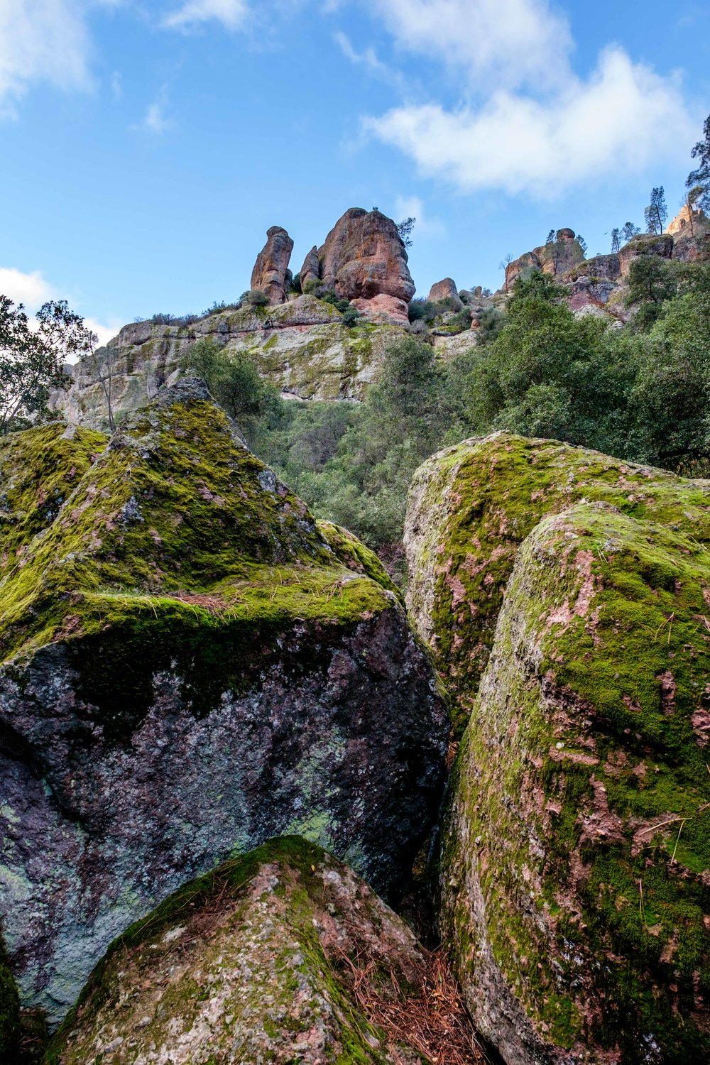 Pinnacles National Park - 008.jpg