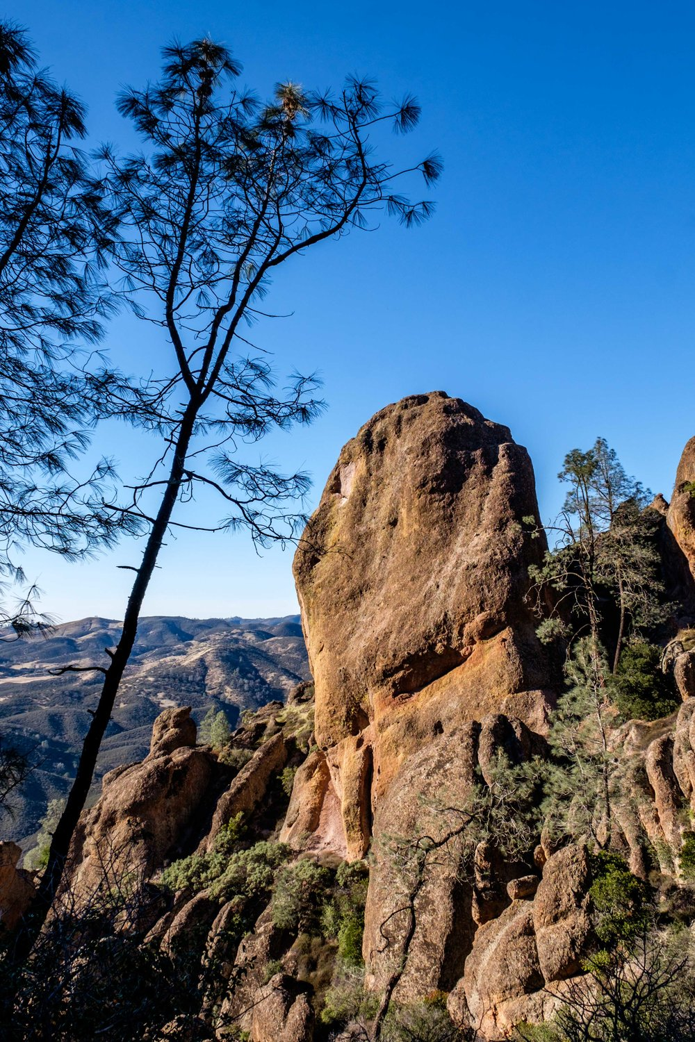 Pinnacles National Park - 043.jpg