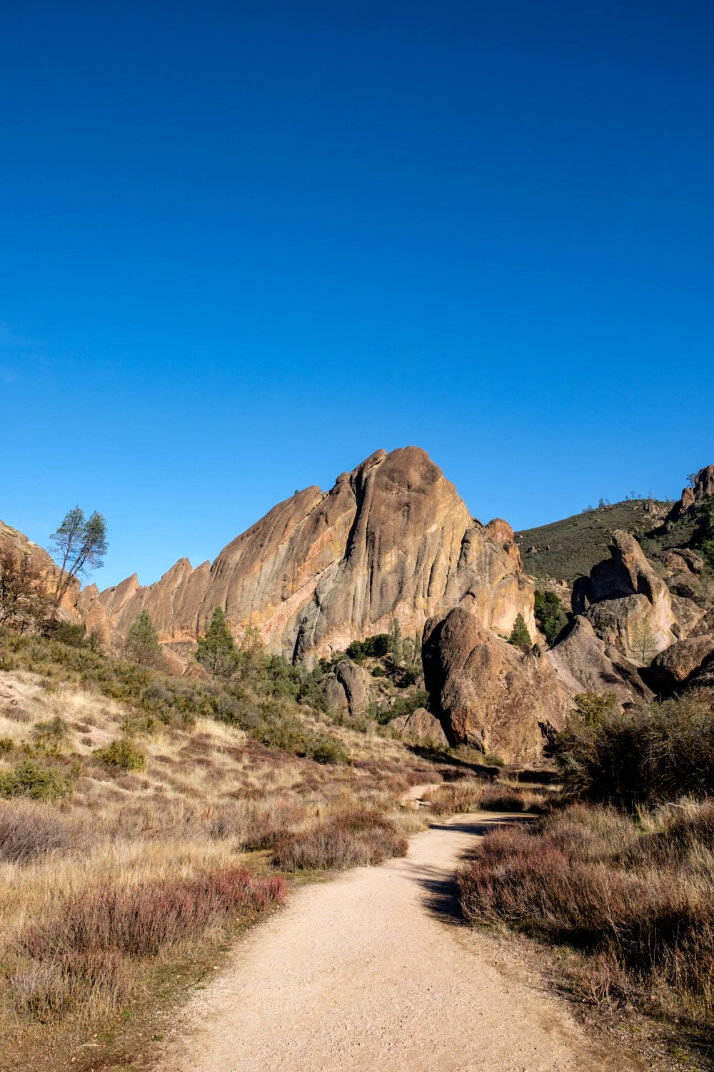 Pinnacles National Park - 051.jpg