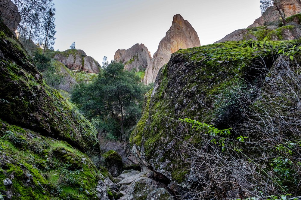 Pinnacles National Park - 057.jpg