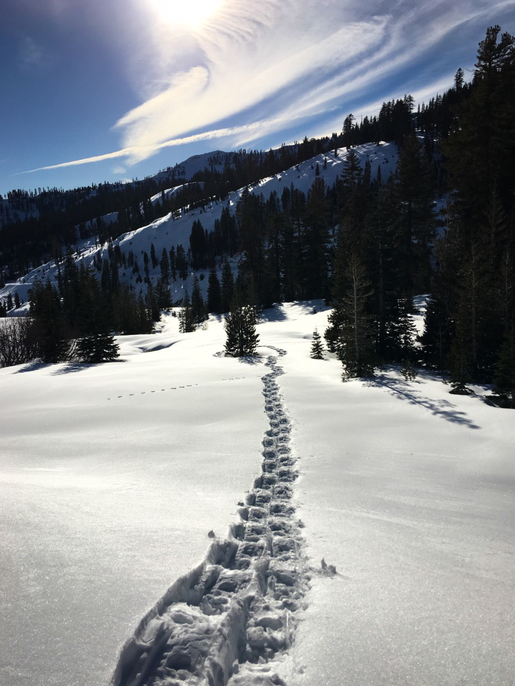 Snowshoeing up a snow-covered main park road in Lassen Volcanic National Park during the winter. Bliss!
