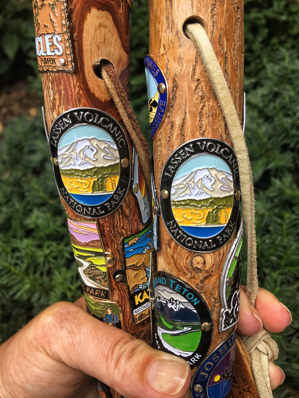 Hiking stick medallions from Lassen Volcanic National Park!