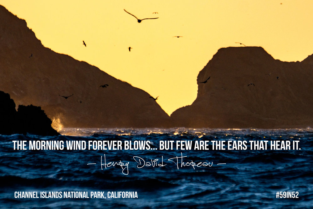 """The morning wind forever blows... but few are the ears that hear it."" - Henry David Thoreau"