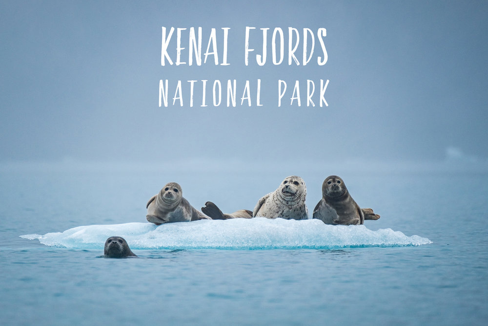 59in52_np-page_kenai-fjords.jpg