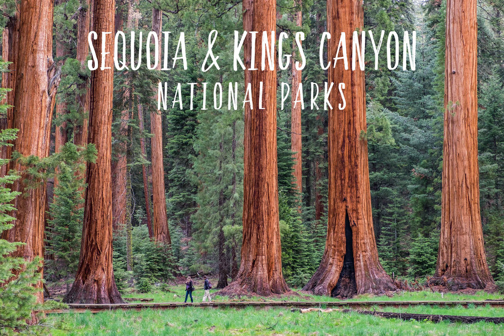 59in52_parks_sequoia-kings-canyon.jpg
