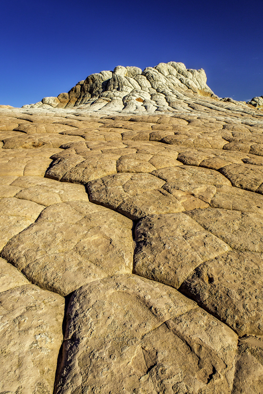 sandstone formations in White Pocket, Grand Staircase Escalante National Monument, Utah