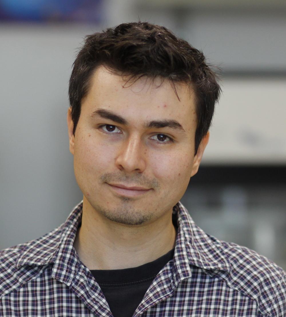 Renat Khaliullin, Postdoc