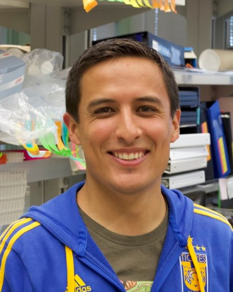 SEBASTIAN GOMEZ, POSTDOC - Sebastian is originally from Ensenada, México and obtained his PhD from the University of California San Diego, working with Martin Hetzer on the role of nuclear pore proteins in the context of cell differentiation. As a postdoc in the Oegema Lab, Sebastian is studying how signaling by the spindle directs cortical remodeling during cytokinesis using the C. elegans embryo as a model. Outside of the lab, he enjoys playing soccer, spending time with his family and taking good care of his terrarium. Sebastian is the recipient of a fellowship from that National Institutes of Health.Email: s9gomez@ucsd.edu