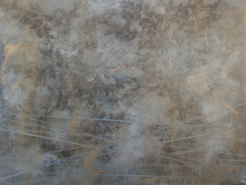 Nebbia Views
