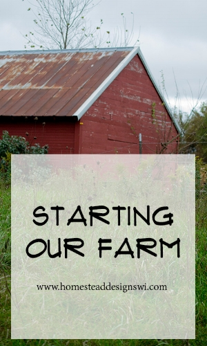 Starting Our Farm.jpg