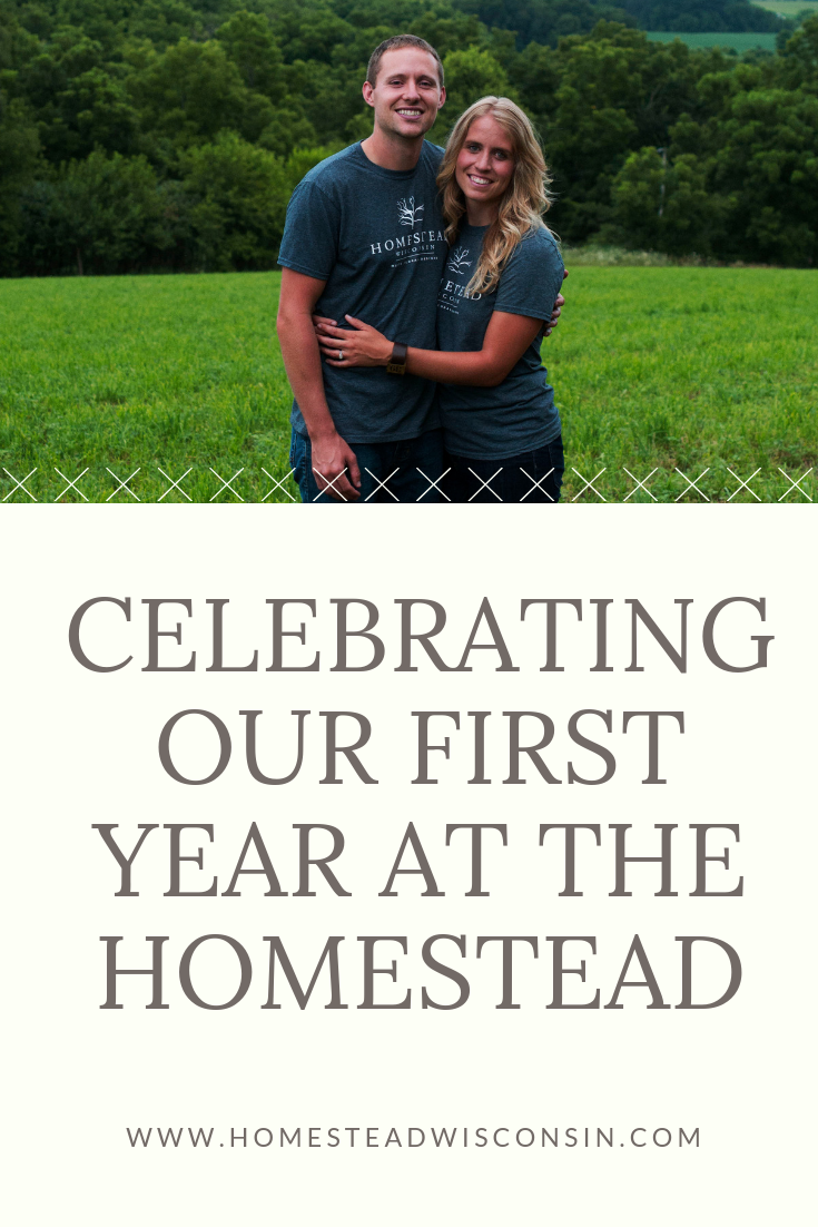 Celebrating Our First Year at the Homestead | Homestead Wisconsin | Madison Wisconsin