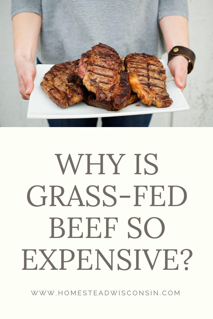 why is grass-fed beef so expensive - southern wisconsin