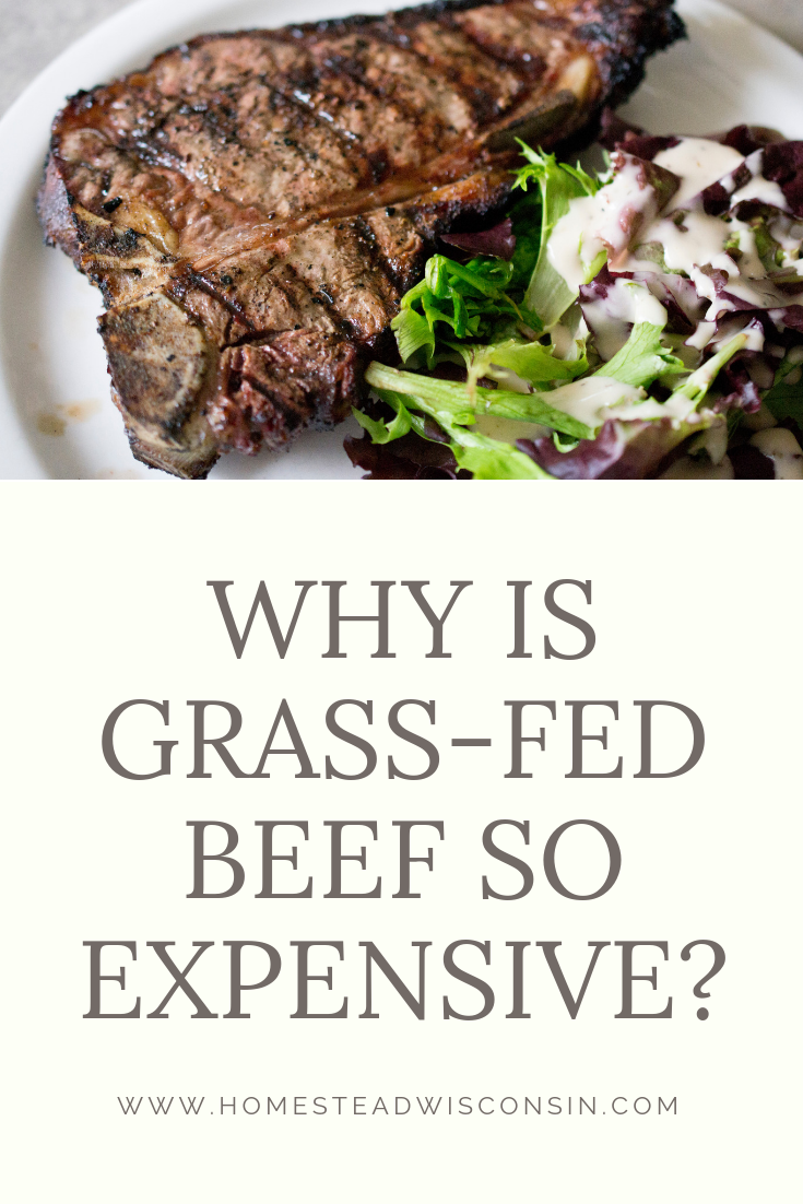 why is grass-fed so expensive - southern wisconsin farmer
