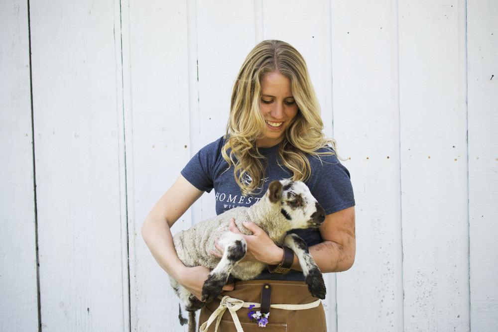 grassfed beef and lamb wisconsin - new glarus farm