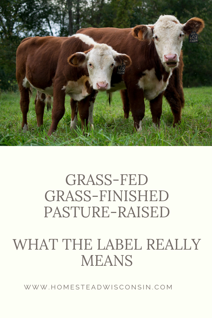 breaking down beef and lamb labels