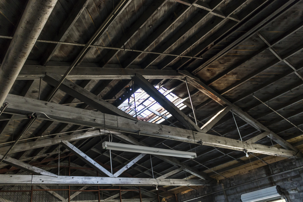 warehouse skylight.jpg