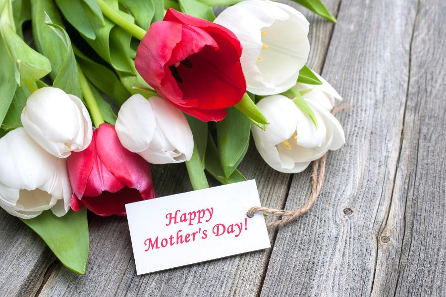 tulips-happy-mothers-day.jpg