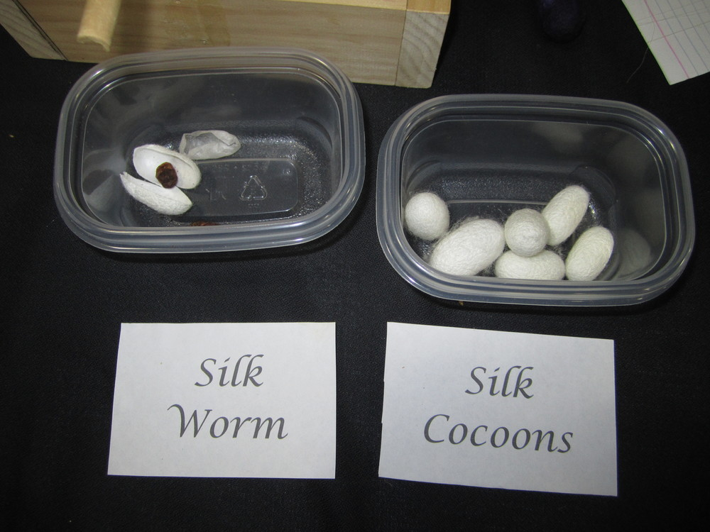 Silk Demonstrations
