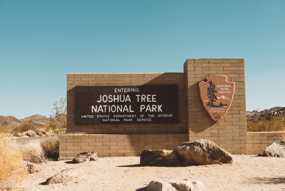 Joshua_Tree-21.jpg