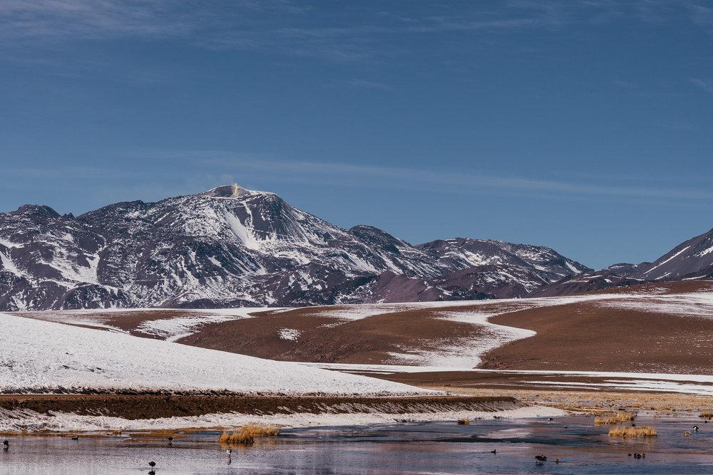AtacamaDesert_KateBallis-4545.jpg