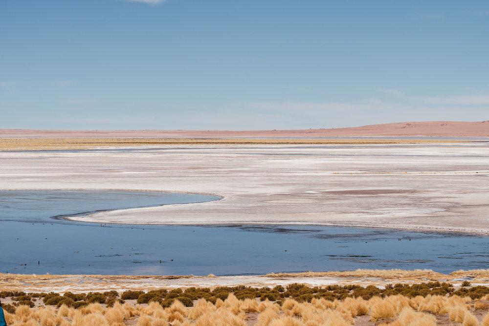 AtacamaDesert_KateBallis-4685.jpg