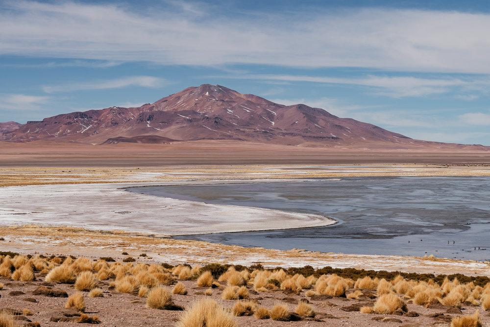 AtacamaDesert_KateBallis-4681.jpg