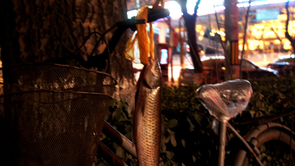 """Fish on the Bike- Everybody eats Fish during New Years. We were not sure if this was for good luck or because they simply had no freezer in the house."""