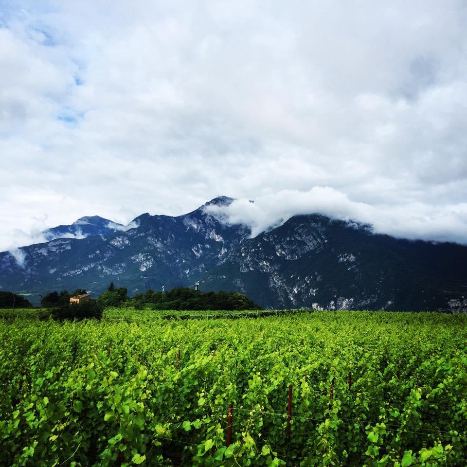 Trento (wanderlustingk)