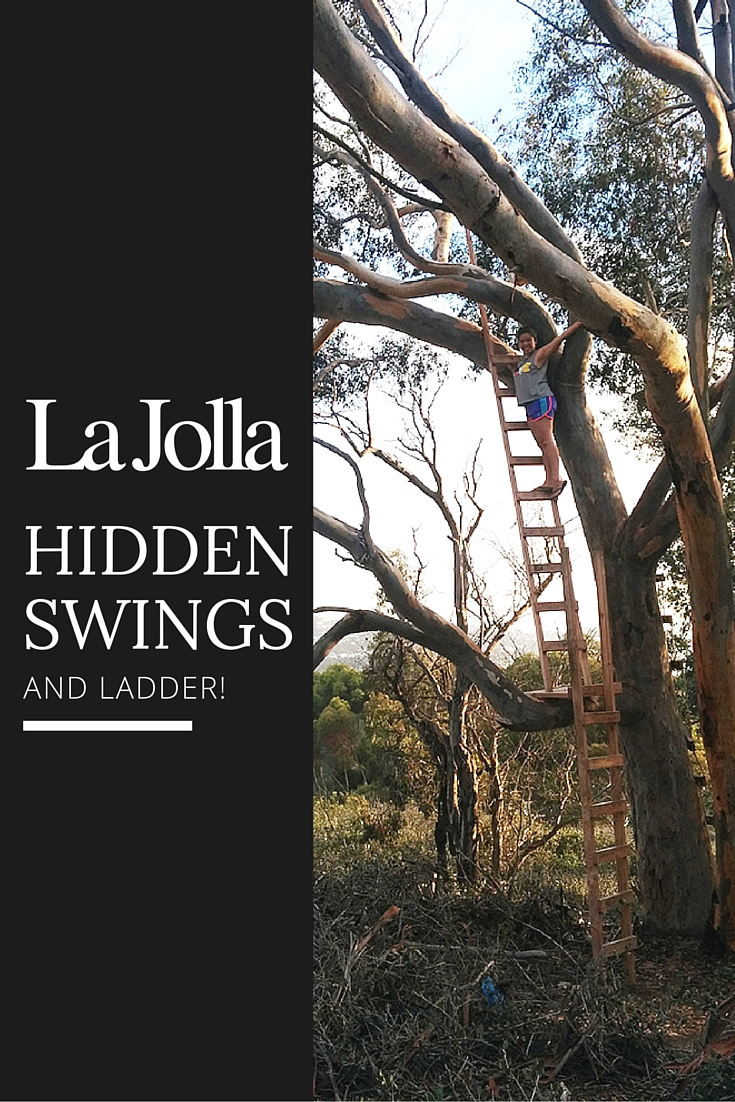 Hidden Swings and ladder in La Jolla, Southern California.